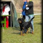 Nitro - MARK 2010